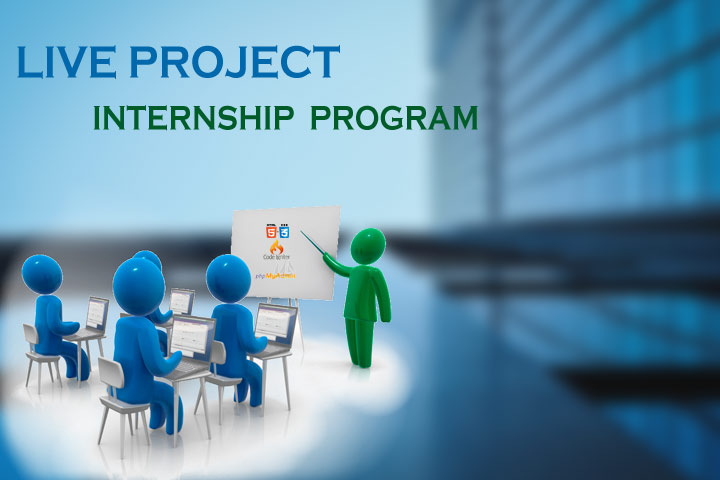 Live Project Intership Program